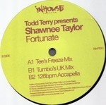 Todd Terry Presents Shawnee Taylor - Fortunate