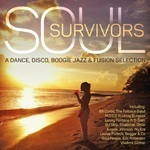 Soul Survivors - Various Artists